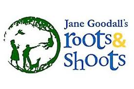 Foto de Roots